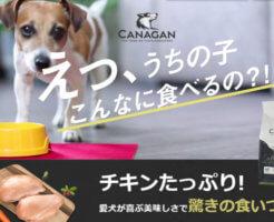 カナガンドッグフードの画像